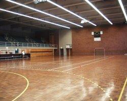 site officiel de l 39 association sportive de haguenau handball. Black Bedroom Furniture Sets. Home Design Ideas