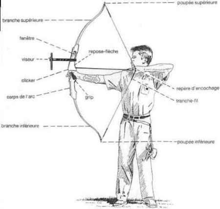 entrainement arc à poulie